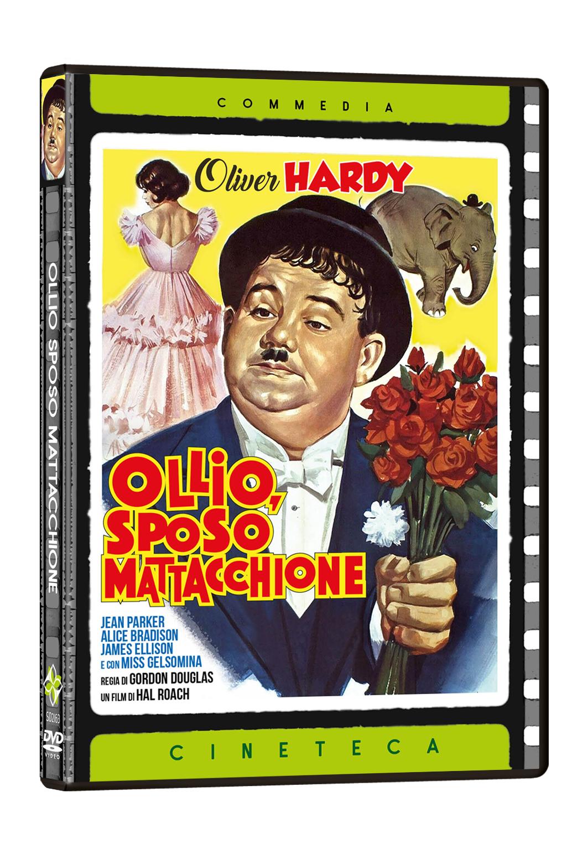 OLLIO SPOSO MATTACCHIONE (DVD)
