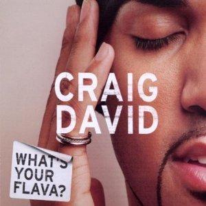CRAIG DAVID - WHAT'S YOUR FLAVA? (CD)