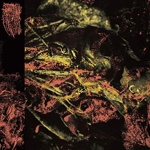 HISSING - PERMANENT DESTITUTION (CD)