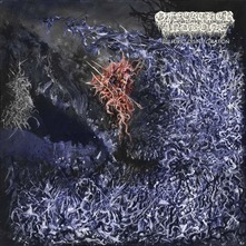 OF FEATHER AND BONE - SULFURIC DISINTEGRATION (CD)