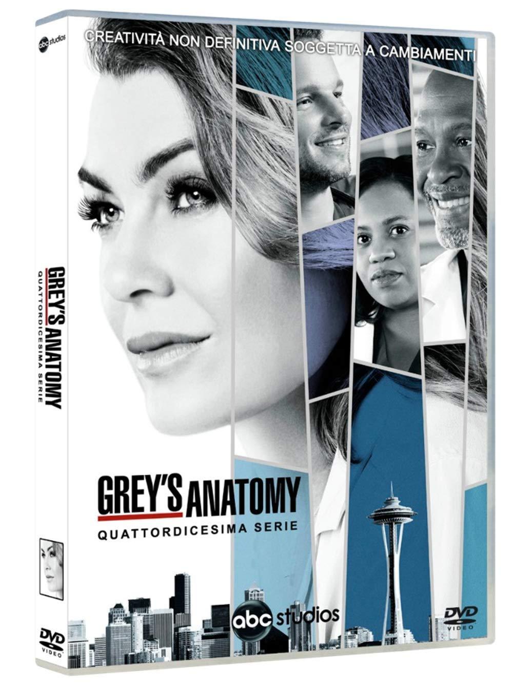 COF.GREY'S ANATOMY - STAGIONE 14 (6 DVD) (DVD)