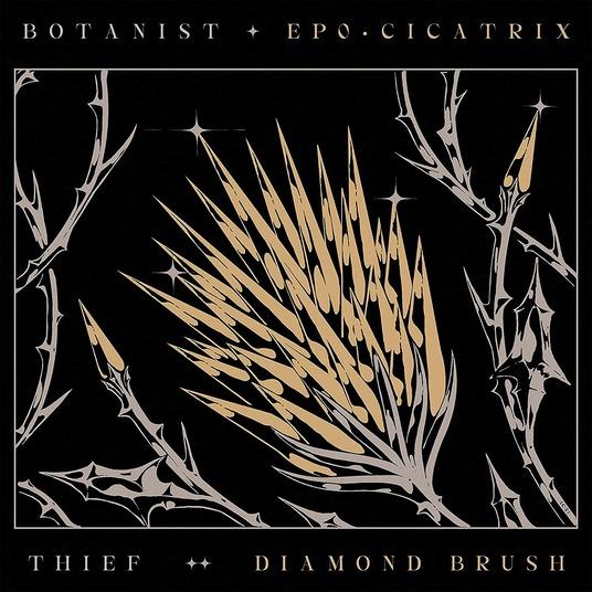 BOTANIST / THIEF - CICATRIX / DIAMOND BRUSH (CD)