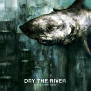 DRY THE RIVER - SHALLOW BED (CD)