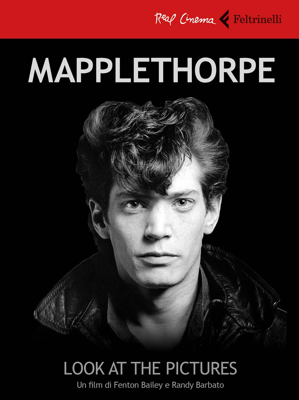 F. BAILEY, R. BARBATO - MAPPLETHORPE: LOOK AT THE PICTURES (LIBR