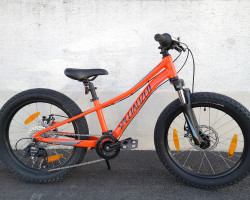 "SPECIALIZED RIPROCK 20  (20"")"