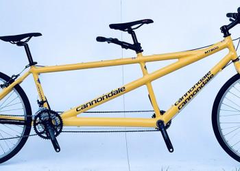 Cannondale MT800