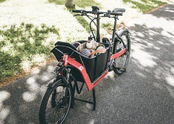 Riese & Müller Packster 40 vario