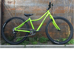 "Naloo > Chameleon 26"" light green"