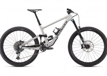 SPECIALIZED Enduro Expert Carbon 29