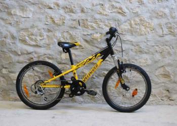 Fabien Bike VELO SPECIALIZED 20 (occasion) (Jaune)  (Unitaire)