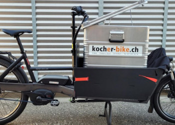 Riese & Müller Packster 60 vario mit Box (Zarges)
