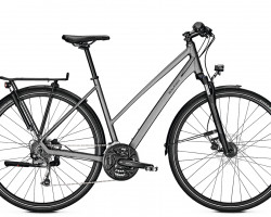 Raleigh Rushour 1.0 Grey