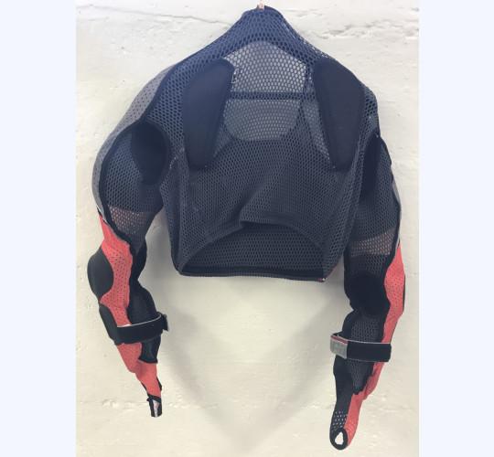 Dainese Rücken Protektor