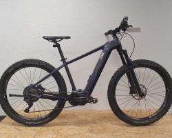Bergstrom ATV 7