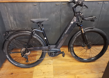 Riese & Müller Nevo GX Touring