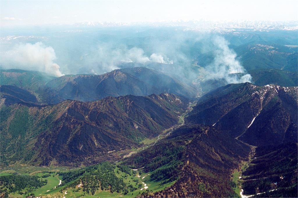 Лісові пожежі в Сибіру - екологічна катастрофа, - фахівці
