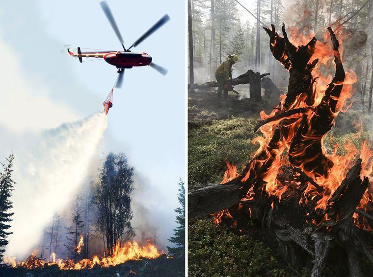 Гасіння лісової пожежі в сибірській тайзі, Красноярський край, Росія, 1 серпня 2019 року
