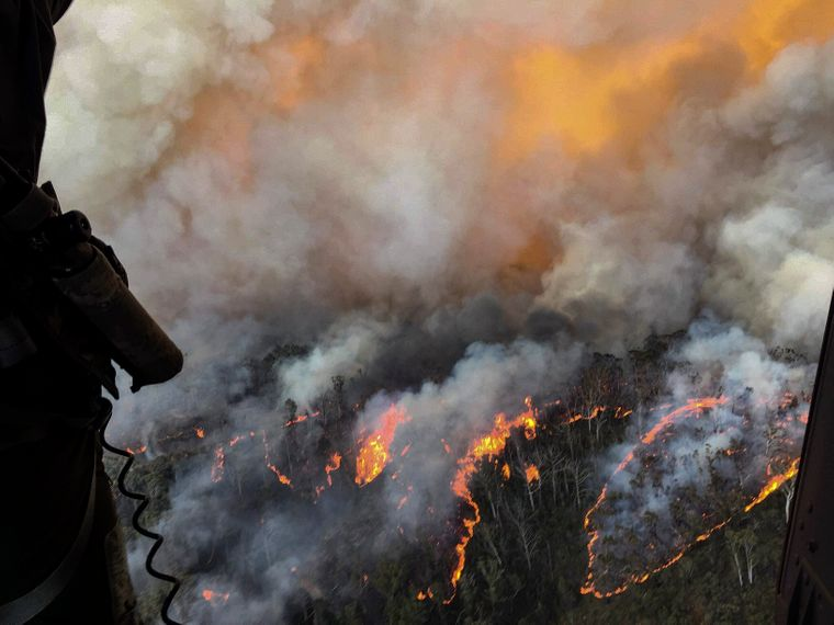 Пожары в Австралии начались осенью 2019-го и продолжаются до сих пор