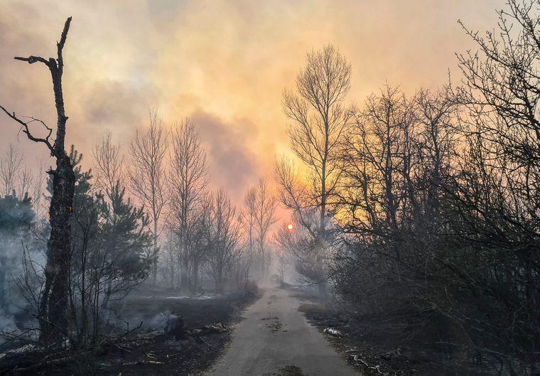 Лесной пожар в Котовском лесничестве возле села Владимировка в Чернобыльской зоне отчуждения, 5 апреля 2020