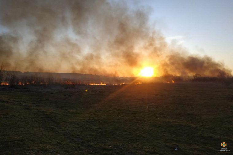 Під Тернополем 17 квітня загорівся Чистилівський орнітологічний заказник загальнодержавного значення