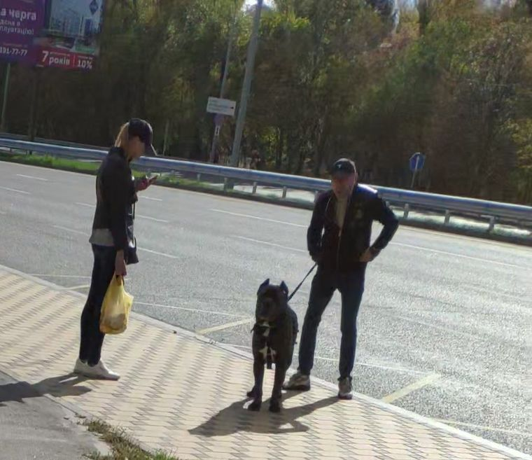 Власник собаки