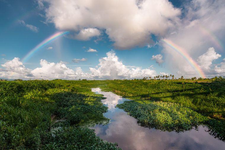 «Подвійна веселка над рівнинами Кароні». Кароні, Тринідад і Тобаго