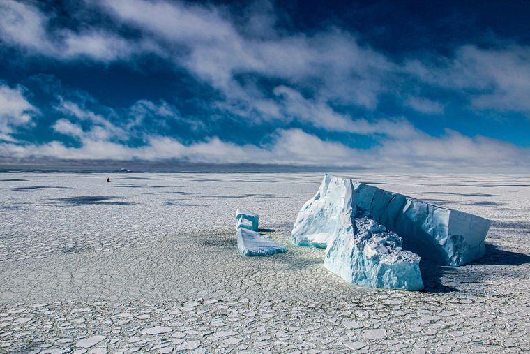 «Плавання між льодом та айсбергами в морі Беллінсгаузена, Антарктика»