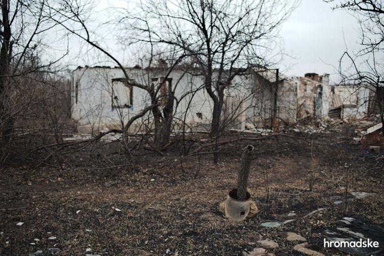 Покинутий сад і будинки в Новоолександрівці