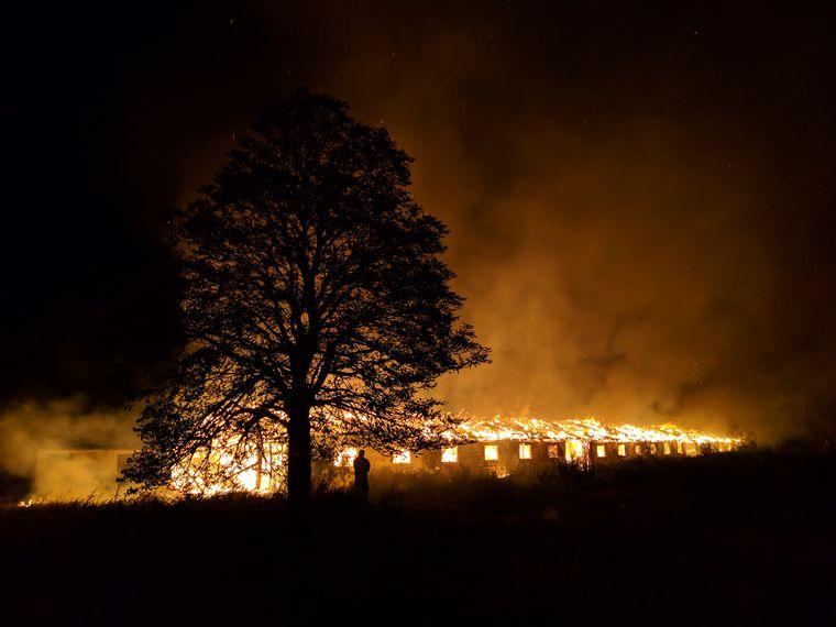 Пожежа на фермі ТОВ «Княжицьке», 2018 рік