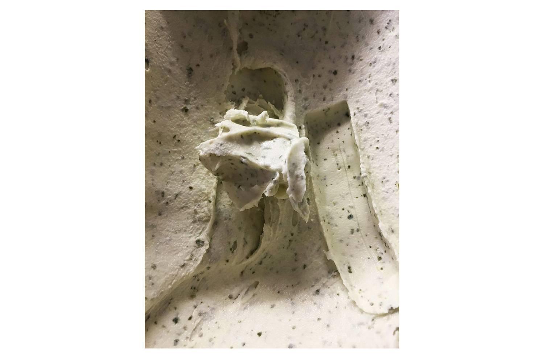 Проект «Агенство нерухомості зниження вартості житла» художнього колективу Сooking Sections. Морозиво з японською гречкою, як символ подвійної загарбницької культури в Шотландії «Наступний «загарбницький» рідний», «Рослина: що з'їла британське морозиво», 2016 рік