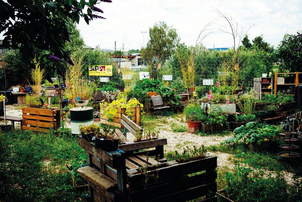 Urban Gardening Inselgrün