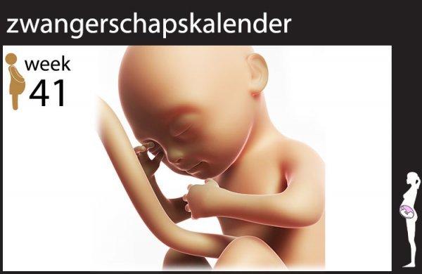 Afbeelding blog '41 weken zwanger'