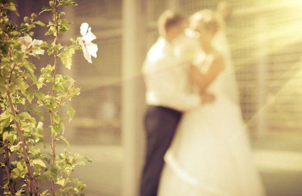 Afbeelding blog '12,5 jaar getrouwd, hoe vier jij het?'
