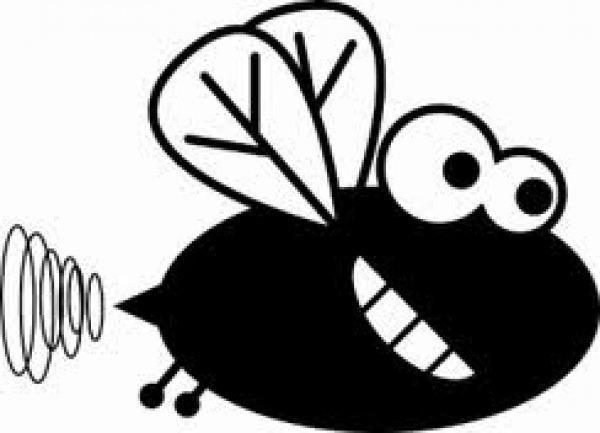 Peuter Bang Slaapkamer : Bang voor vliegen en ander ongedierte mamaplaats