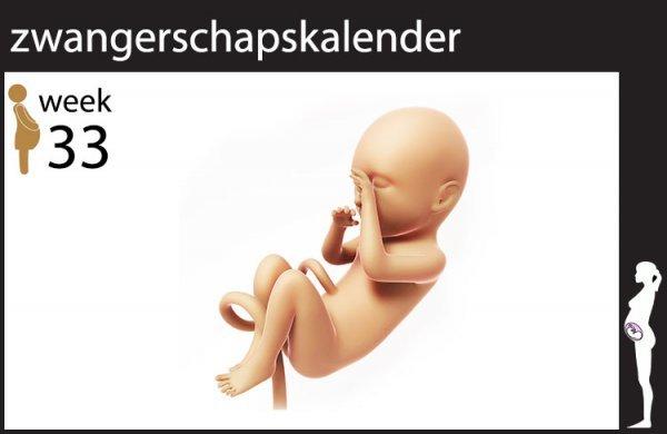 Afbeelding blog '33 weken zwanger'