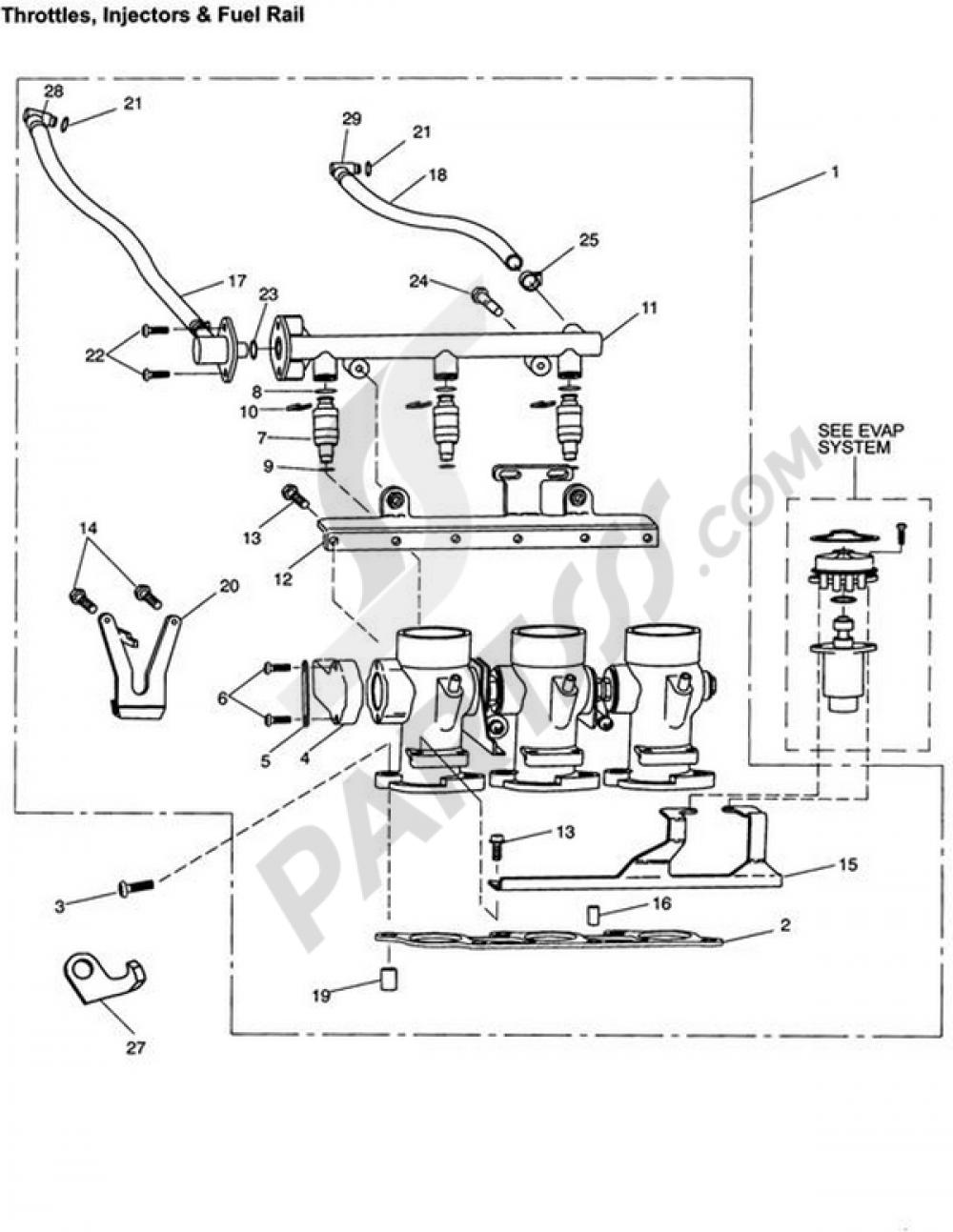 Throttles/Injectors and Fuel Rail Triumph TIGER 955i BASTIDOR A ...