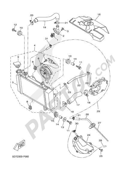 Yamaha MT-125 ABS 2016 RADIATOR AND HOSE