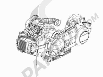 Piaggio Typhoon 125 4T 2V E3 (USA) 2011-2015 Motor completo