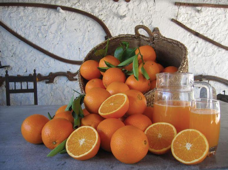 orange agrumes La Familia Serra