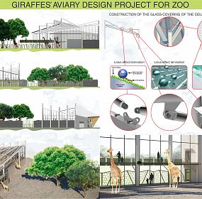 Giraffes' aviary design project for zoo