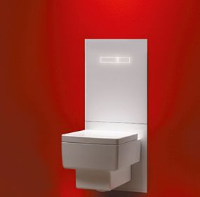 TECElux module, the all-rounder behind the toilet terminal