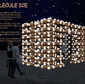 The Molecule Ice
