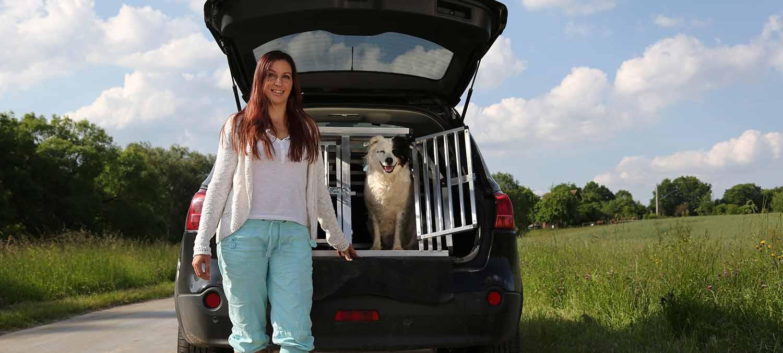 Auto für Hund bestellen