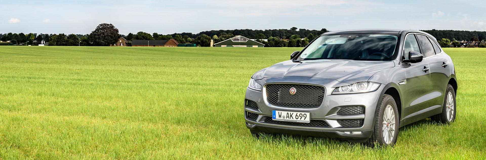 Jaguar Gebrauchtwagen bestellen