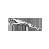 Logo Jaguar GW 11