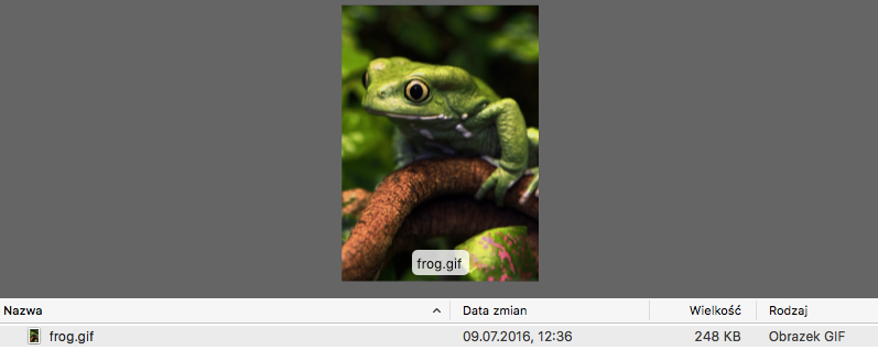 OS preview of source file with animated frog