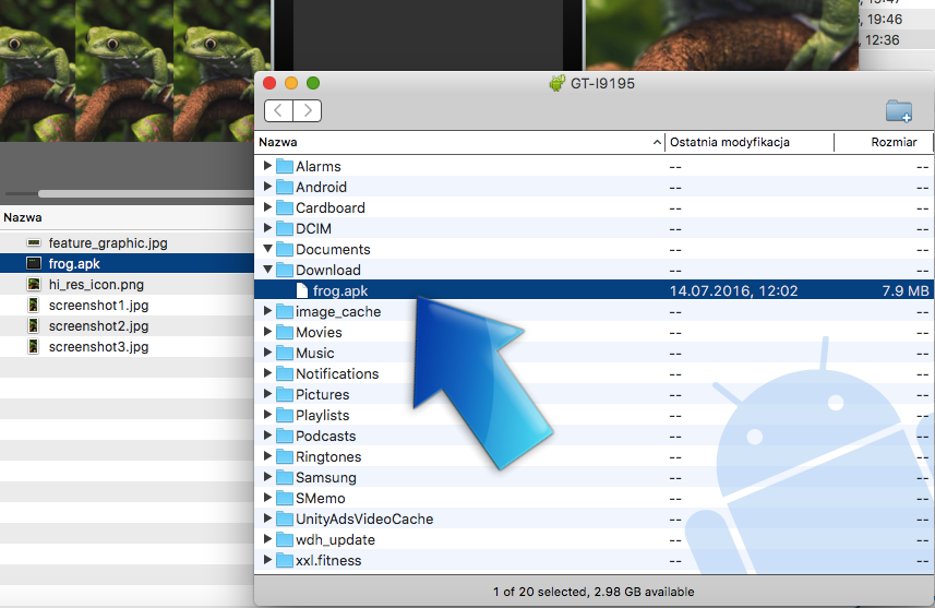 Downloaded Frog Live Wallpaper app shown in desktop filesystem