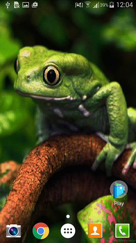 Frog Live Wallpaper app set on Android mobile