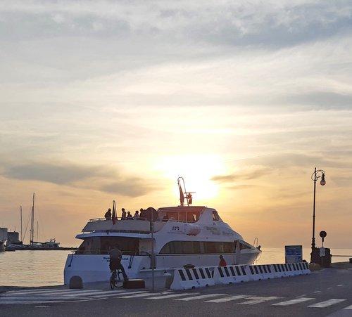delfino tramonto mod.jpg