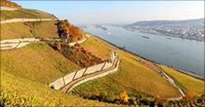 Dejlig kør-selv ferie til Rhinen